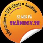 skanegy_knapp