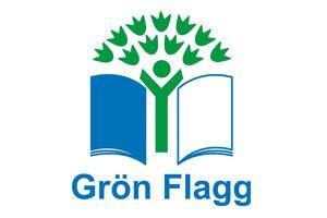 gron flagg