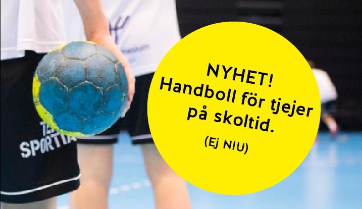 handboll tjejer ystad gymnasium